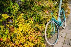 Σταθμευμένος στην κινηματογράφηση σε πρώτο πλάνο ποδηλάτων οδών πόλεων στοκ φωτογραφίες