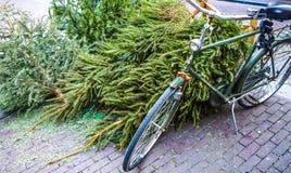 Σταθμευμένος στην κινηματογράφηση σε πρώτο πλάνο ποδηλάτων οδών πόλεων στοκ εικόνες