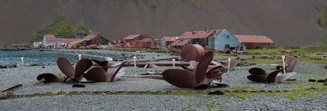 Σταθμός κυνηγιού φάλαινας Stromness Στοκ φωτογραφίες με δικαίωμα ελεύθερης χρήσης