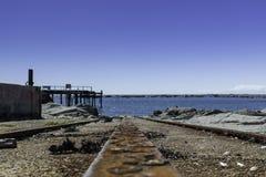 Σταθμός φαλαινών Kaikoura Στοκ Εικόνα