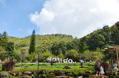 Σταθμός ANG Khang Doi βασιλικός γεωργικός πρώτα στην Ταϊλάνδη Στοκ Εικόνες