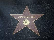 Σταρ του Χόλιγουντ του James Melton Στοκ Εικόνες