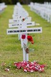 Σταυροί ενθύμησης ANZAC Στοκ Εικόνες