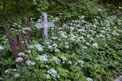 Σταυροί στο νεκροταφείο στοκ φωτογραφίες με δικαίωμα ελεύθερης χρήσης