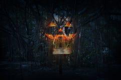 Σταυρός με την κολοκύθα φαναριών του Jack Ο άνω του απόκοσμου δασικού τη νύχτα Tj Στοκ εικόνες με δικαίωμα ελεύθερης χρήσης