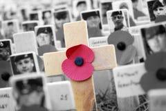 Σταυρός παπαρουνών, επίδειξη ημέρας ενθύμησης Στοκ φωτογραφία με δικαίωμα ελεύθερης χρήσης