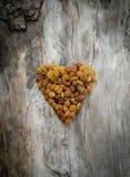Σταφίδες υπό μορφή καρδιάς Στοκ εικόνες με δικαίωμα ελεύθερης χρήσης