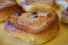 Σταφίδες Pinwheel & πόνου aux croissant Στοκ εικόνες με δικαίωμα ελεύθερης χρήσης