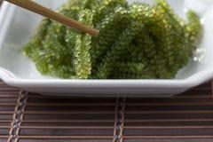 Σταφύλια θάλασσας ή πράσινη πικάντικης σάλτσα χαβιαριών και σε ένα άσπρο πιάτο στοκ φωτογραφία με δικαίωμα ελεύθερης χρήσης