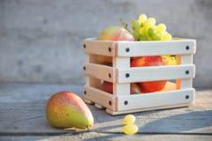 Σταφύλια, φρούτα αχλαδιών και μήλων σε ένα κιβώτιο Στοκ Εικόνες