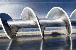 σταφύλι τρυπανιών Στοκ φωτογραφία με δικαίωμα ελεύθερης χρήσης