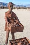 Σταφύλια στα λιβάδια Galleta Στοκ Φωτογραφίες