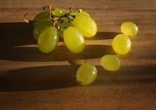 Σταφύλια στο θερμό φυσικό φως Φρούτα Στοκ φωτογραφίες με δικαίωμα ελεύθερης χρήσης