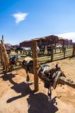 Σταύλος αλόγων η κοιλάδα μνημείων, Γιούτα στοκ εικόνες με δικαίωμα ελεύθερης χρήσης