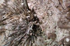 Σταλακτίτες - μέσα σε ένα σπήλαιο Στοκ φωτογραφία με δικαίωμα ελεύθερης χρήσης