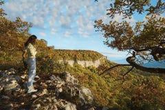 Στα βουνά, στο δάσος, μια φωτεινή ηλιόλουστη ημέρα στοκ φωτογραφία με δικαίωμα ελεύθερης χρήσης