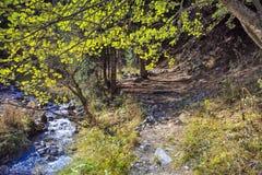 Στα βουνά Στοκ φωτογραφίες με δικαίωμα ελεύθερης χρήσης