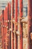 Στα μαραμένα κιγκλιδώματα σιδήρου αμπέλων σκουριασμένα Στοκ Φωτογραφίες