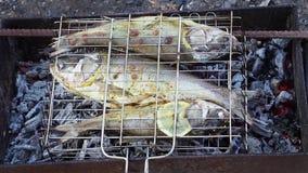 Στα ψάρια ανθράκων με ένα λεμόνι ψήνεται απόθεμα βίντεο