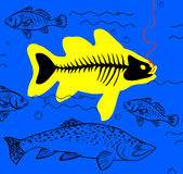 Στα ψάρια δολώματος Στοκ φωτογραφία με δικαίωμα ελεύθερης χρήσης