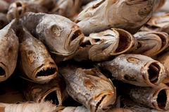 στενά αποξηραμένα ψάρια πασ&t στοκ φωτογραφία με δικαίωμα ελεύθερης χρήσης