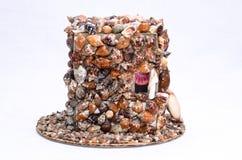 στενά θαλασσινά κοχύλια θαλασσινών κοχυλιών διακοσμήσεων συλλογής επάνω Στοκ Εικόνες