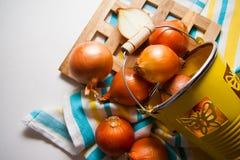 στενά κρεμμύδια συγκομιδών επάνω στοκ φωτογραφία