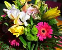 στενά λουλούδια επάνω Στοκ εικόνα με δικαίωμα ελεύθερης χρήσης