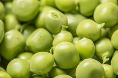 στενά πράσινα μπιζέλια επάνω Στοκ φωτογραφίες με δικαίωμα ελεύθερης χρήσης