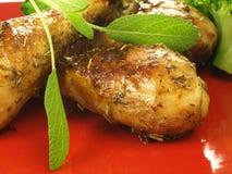 στενά πόδια κοτόπουλου επάνω Στοκ φωτογραφία με δικαίωμα ελεύθερης χρήσης