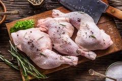 στενά πόδια κοτόπουλου που αυξάνονται Ακατέργαστα πόδια κοτόπουλου με το αλατισμένα πιπέρι και τα χορτάρια Στοκ εικόνα με δικαίωμα ελεύθερης χρήσης