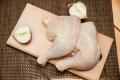 στενά πόδια κοτόπουλου που αυξάνονται Στοκ Φωτογραφίες