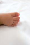 στενά πόδια μωρών επάνω Στοκ Εικόνες