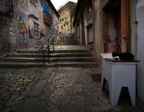 Στενές οδοί του παλαιού Πόρτο Πορτογαλία στοκ φωτογραφίες με δικαίωμα ελεύθερης χρήσης