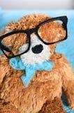 στενές σχολικές προμήθειες μοιρογνωμόνιων πυξίδων επάνω Το Teddy αντέχει με τα γυαλιά Στοκ εικόνα με δικαίωμα ελεύθερης χρήσης