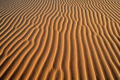 στενή άμμος αμμόλοφων επάνω Στοκ Φωτογραφίες