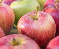 Στενή άποψη, η κόκκινη οργανική Apple Στοκ φωτογραφία με δικαίωμα ελεύθερης χρήσης