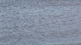Στενή άποψη της επιφάνειας της θάλασσας απόθεμα βίντεο