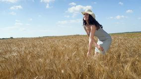 στενή γυναίκα πορτρέτου α στο καπέλο στον τομέα σίτου απόθεμα βίντεο