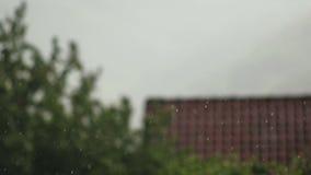 Στενή επάνω υψηλή ταχύτητα 1 παραθυρόφυλλων βροχής απόθεμα βίντεο