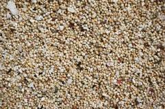 στενή θάλασσα άμμου επάνω Στοκ Φωτογραφίες