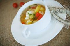 στενή καλυμμένη ψάρια σούπα επάνω Στοκ φωτογραφία με δικαίωμα ελεύθερης χρήσης