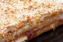 Στενή μακρο άποψη της πίτσας με το σουσάμι στην κορυφή Στοκ εικόνες με δικαίωμα ελεύθερης χρήσης