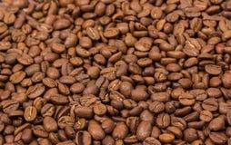 στενή οριζόντια σύσταση καφέ επάνω φασόλια καφέ ως ταπετσαρία υποβάθρου arabica φασόλι cofee Στοκ Εικόνες