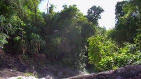 Στενή προσέγγιση στον καταρράκτη, Phuket Ταϊλάνδη, Νοτιοανατολική Ασία 4K φιλμ μικρού μήκους