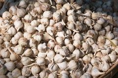 στενή στάση αγοράς σκόρδου επάνω στοκ εικόνες με δικαίωμα ελεύθερης χρήσης