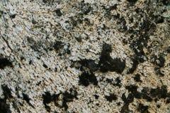 στενή σύσταση πετρών λεπτομέρειας ανασκόπησης αρχιτεκτονικής επάνω Ζωηρόχρωμη σύσταση σε ένα υπόβαθρο βράχου Στοκ Εικόνα