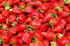 στενή φράουλα επάνω στοκ εικόνες