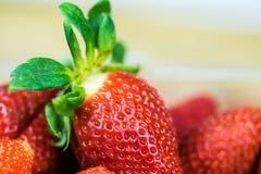 στενή φράουλα επάνω Στοκ Εικόνα