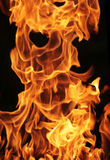 στενή φωτογραφία πυρκαγιάς επάνω Στοκ Φωτογραφίες